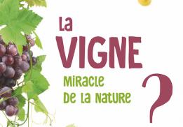 LA VIGNE, MIRACLE DE LA NATURE ?