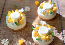 Cheesecake Mangue-Passion-Basilic-Jasmin